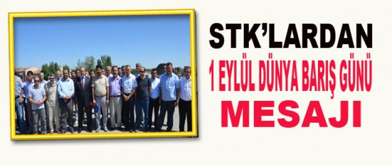 STK'lardan 1 Eylül Dünya Barış Günü Mesajı