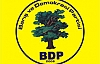 BDP'de Yerel Seçim Hazırlıkları