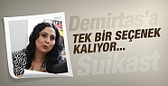 Demirtaş'a suikast girişimi tek bir seçenek...