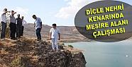 Dicle Nehri Kenarında Mesire Alanı Çalışması