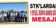 STK'lardan 1 Eylül Dünya Barış Günü...