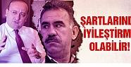 Yalçın Akdoğan: Öcalan'ın şartlarında...