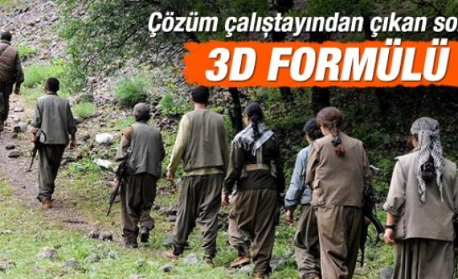 Çözüm sürecinde 3D formülü: Eve, hayata, siyasete dönüş