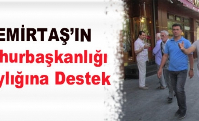 Demirtaş'ın Cumhurbaşkanlığı Adaylığına Destek