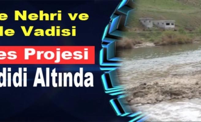 Dicle Nehri ile Vadisi 3 Hes Projesi Tehdidi Altında
