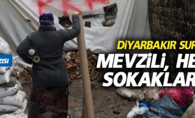 Diyarbakır Suriçi'nden,Mevzili, hendekli sokaklardan...