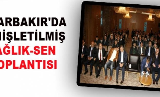 Diyarbakır'da Genişletilmiş Sağlık-Sen Toplantısı
