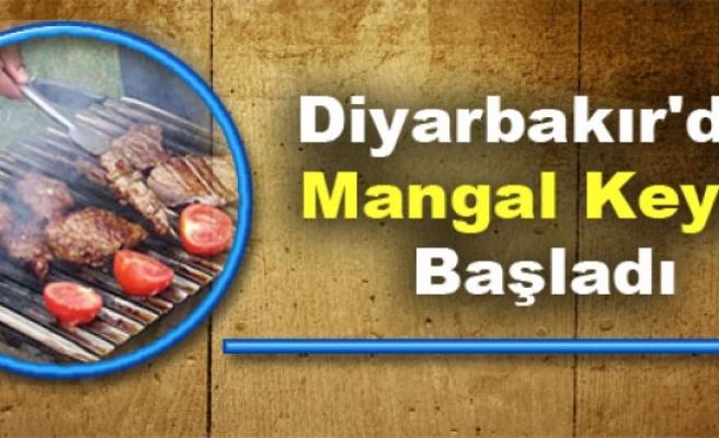 Diyarbakır'da Mangal Keyfi Başladı