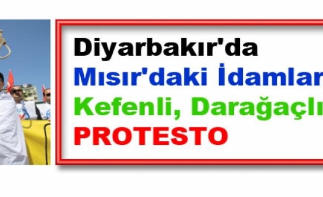 Diyarbakır'da Mısır'daki İdamlara Kefenli, Darağaçlı Protesto