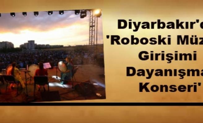 Diyarbakır'da 'Roboski Müzesi Girişimi Dayanışma Konseri'