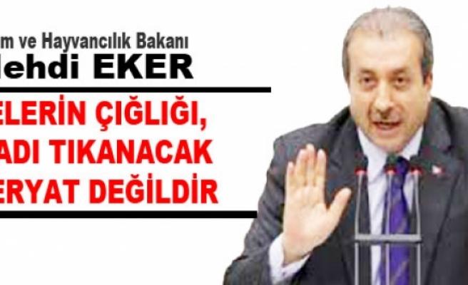 """Gıda Tarım ve Hayvancılık Bakanı Mehdi Eker, """"Annelerin çığlığı, feryadı kulak tıkanacak bir feryat değildir."""
