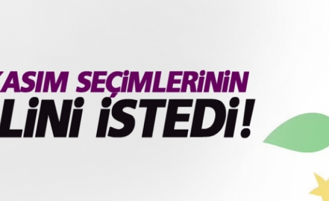 HDP 1 Kasım seçimlerinin iptalini istedi!