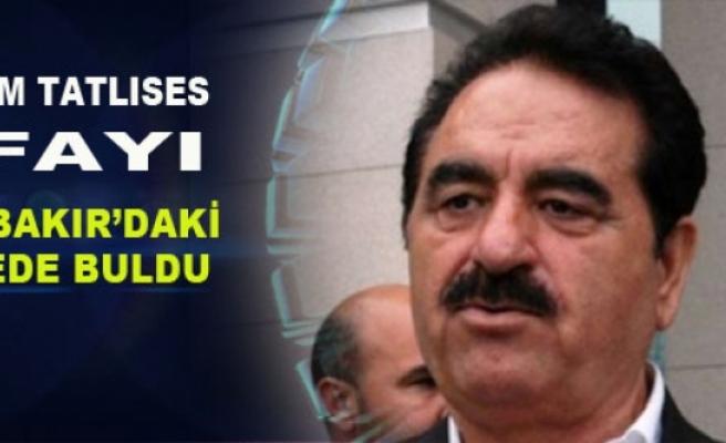 İbo Şifayı Diyarbakır'daki Türbede Buldu