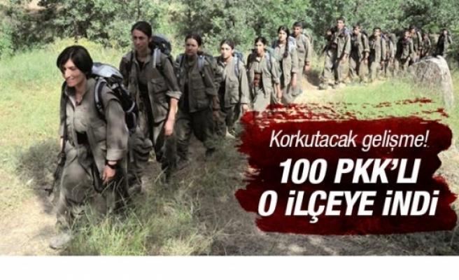 Korkutacak gelişme! Dağdaki 100 PKK'lı o ilçeye indi