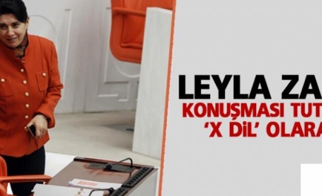 Leyla Zana'nın konuşması tutanaklara 'x dil' olarak geçti