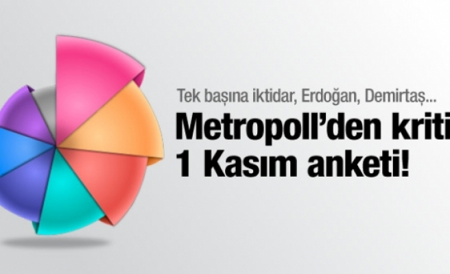 Metropoll 1 Kasım anketini iş adamlarına açıkladı