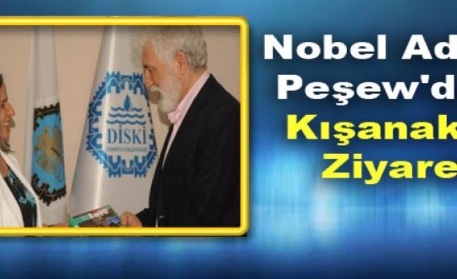 Nobel Adayı Peşew'den Kışanak'a Ziyaret