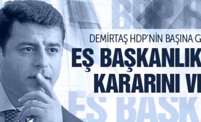 Selahattin Demirtaş Eş Başkanlık için son kararını verdi!
