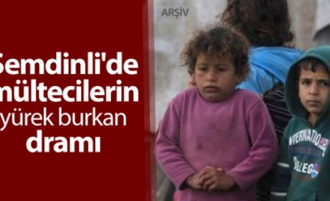 Şemdinli'de Afgan mültecilerin yürek burkan dramı