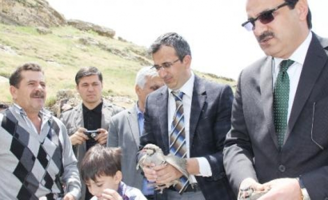 Silvan'da 500 Keklik Doğaya Salındı