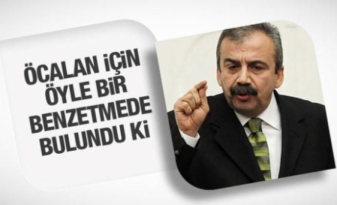 Sırrı Sürayya Önder'den Öcalan için ilginç benzetme