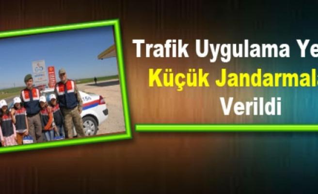 Trafik Uygulama Yetkisi Küçük Jandarmalara Verildi