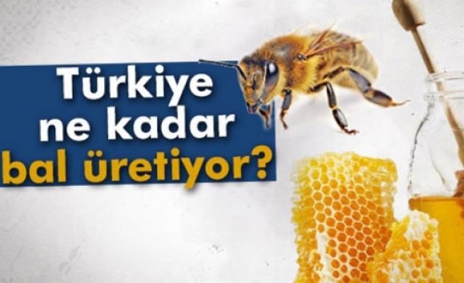 Türkiye ne kadar bal üretiyor?