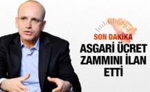 Asgari ücret 2016'da kaç lira bakan Şimşek ilan etti