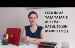 CEZA İNFAZ YASASI, MECLİSTE KABUL EDİLEN MADDELER (1.BÖLÜM)