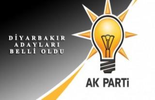 31 Mart Yerel Seçimleri için Ak Parti Diyarbakır...