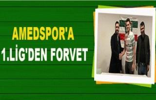AMEDSPOR'A 1.LİG'DEN FORVET