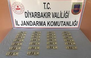 Diyarbakır'da sahte dolar operasyonu