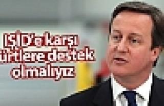 Cameron: IŞİD'e karşı Kürtlere destek olmalıyız