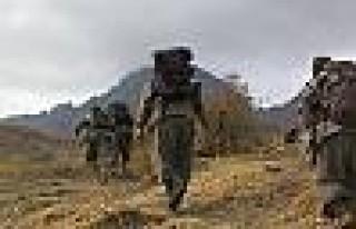 Çekilen PKK'lılar Bir Haftalık Yürüyüşü Anlattı
