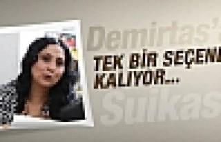 Demirtaş'a suikast girişimi tek bir seçenek var...