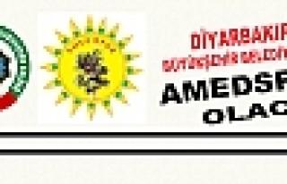 Diyarbakır Büyükşehir Belediyespor Amedspor olacak