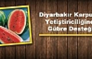 Diyarbakır Karpuzu Yetiştiriciliğine Gübre Desteği