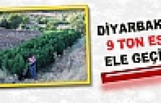 Diyarbakır'da 9 Ton Esrar Ele Geçirildi
