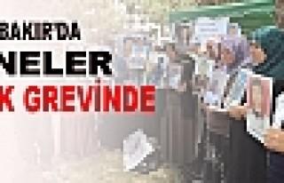 Diyarbakır'da Anneler Açlık Grevine Başladı