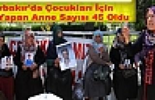 Diyarbakır'da Çocukları İçin Eylem Yapan Anne...