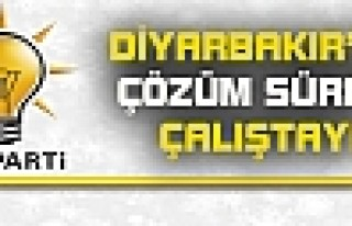 Diyarbakır'da Çözüm Süreci Çalıştayı