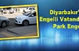 Diyarbakır'da Engelli Vatandaşlara Park Engeli