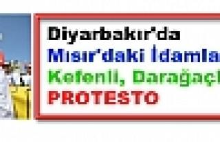 Diyarbakır'da Mısır'daki İdamlara Kefenli, Darağaçlı...