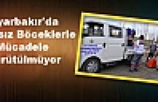 Diyarbakır'da Zararsız Böceklerle Mücadele Yürütülmüyor