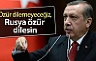 Erdoğan: Hava sahamızı ihlal eden Rusya'dan özür...