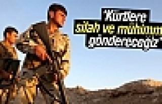 Hollanda: Kürtlere silah ve mühimmat göndereceğiz