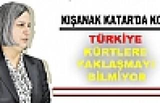 Kışanak: Türkiye, Kürtlere yaklaşmayı bilmiyor