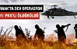 Şırnak'ta 10 bin askerle operasyon! 11 PKK'lı öldürüldü