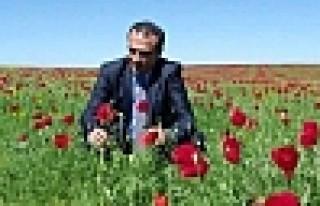 'Türkiye,Zülme Başkaldıran Demirci Kawa Gibidir'...