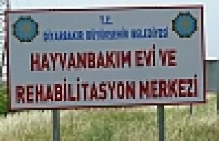 'VATANDAŞIN AKLIYLA OYNUYORLAR'
